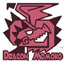 Dragon momoko model kits and accessories