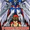 [EW-2] HG 1/100 Gundam Wing Zero Custom