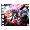 MG 1/100 GN-0000 Gundam 00 Raiser