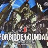 HG 1/144 Forbidden Gundam