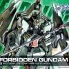 [R09] HG 1/144 Forbidden Gundam