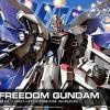 [R15] HG 1/144 Freedom Gundam