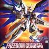 NG 1/60 Freedom Gundam