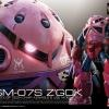 [016] RG 1/144 MSM-07S Zgok (Char Custom)