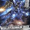 [003] NG 1/100 Mcgillis Schwalbe Graze