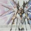 [Daban] MG 1/100 MB Strike Freedom Gundam - Metal Build alike ver.