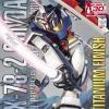 MG 1/100 RX-78-2 Gundam Ver.2.0 (Titanium Finish)