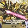 NG 1/100 ORB-01 Akatsuki Gundam Oowashipack / Shiranuipack Full Set