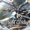 MG 1/100 Freedom Gundam (Extra-Finish Ver.)