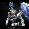 Special Coating : MG 1/100 Freedom Gundam Ver.2.0 (Third party paint job)