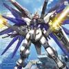MG 1/100 ZGMF-X10A Freedom Gundam
